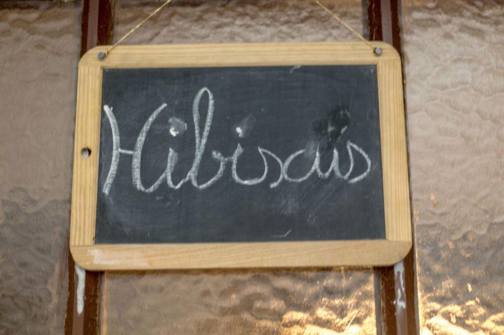 Le Bellevue - Duplex hibiscus